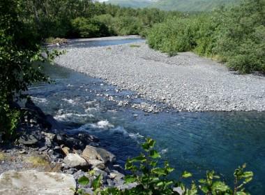 Kodiak Salmon (14)