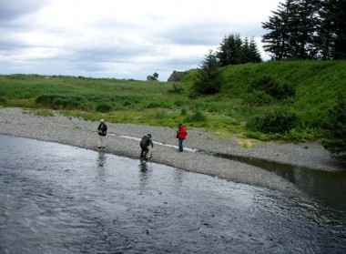 Kodiak Salmon (8)