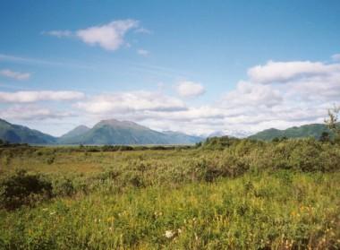 Kodiak Saltery River (11)