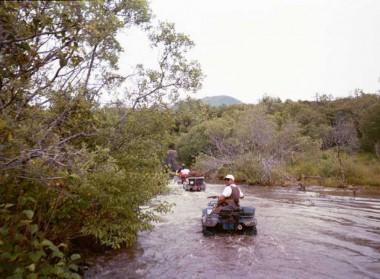 Kodiak Saltery River (15)