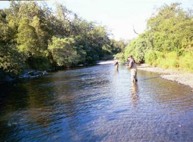 Kodiak Saltery River (16)