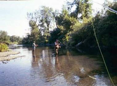 Kodiak Saltery River (17)