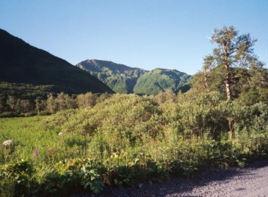 Kodiak Saltery River (3)