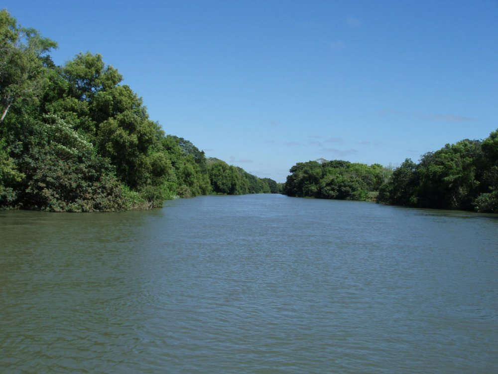 Parana River Related Keywords