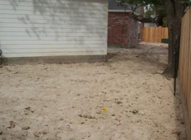 back yard (5)